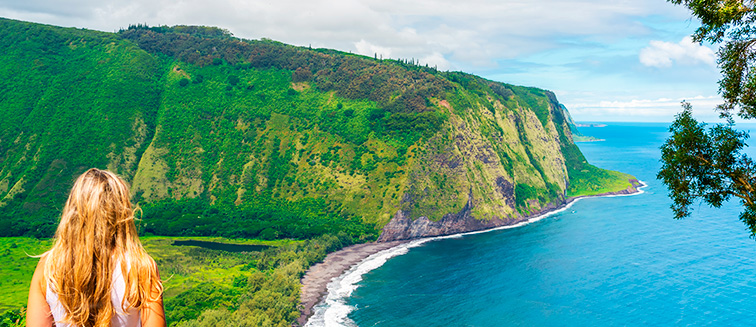 Big Island, <em>Hawaii</em>