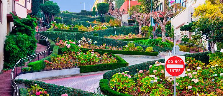 Lombard Street <em>San Francisco</em>